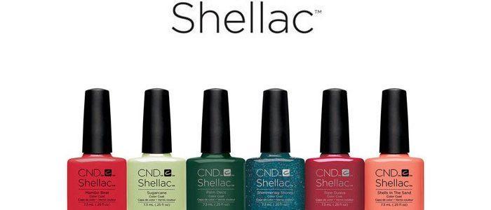 shellac-2